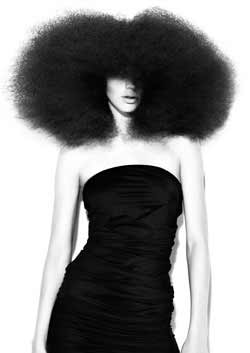 © ANTOINETTE BEENDERS HAIR COLLECTION